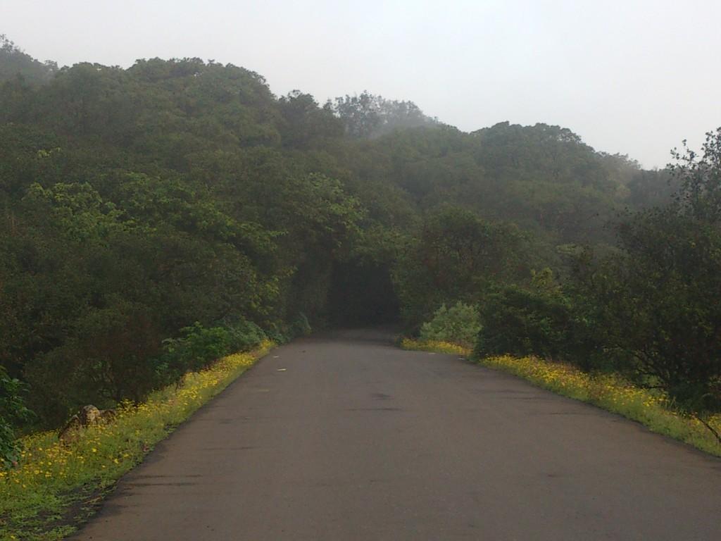 Bhimashankar Road view